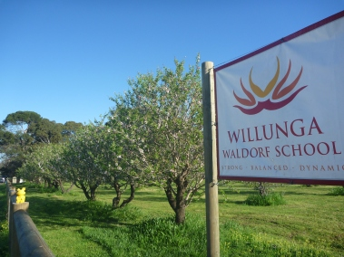 piggy willunga waldorf school