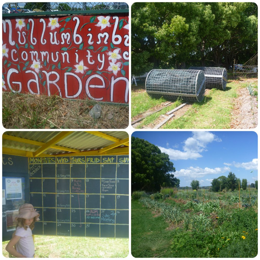 collage mullum comm garden 1