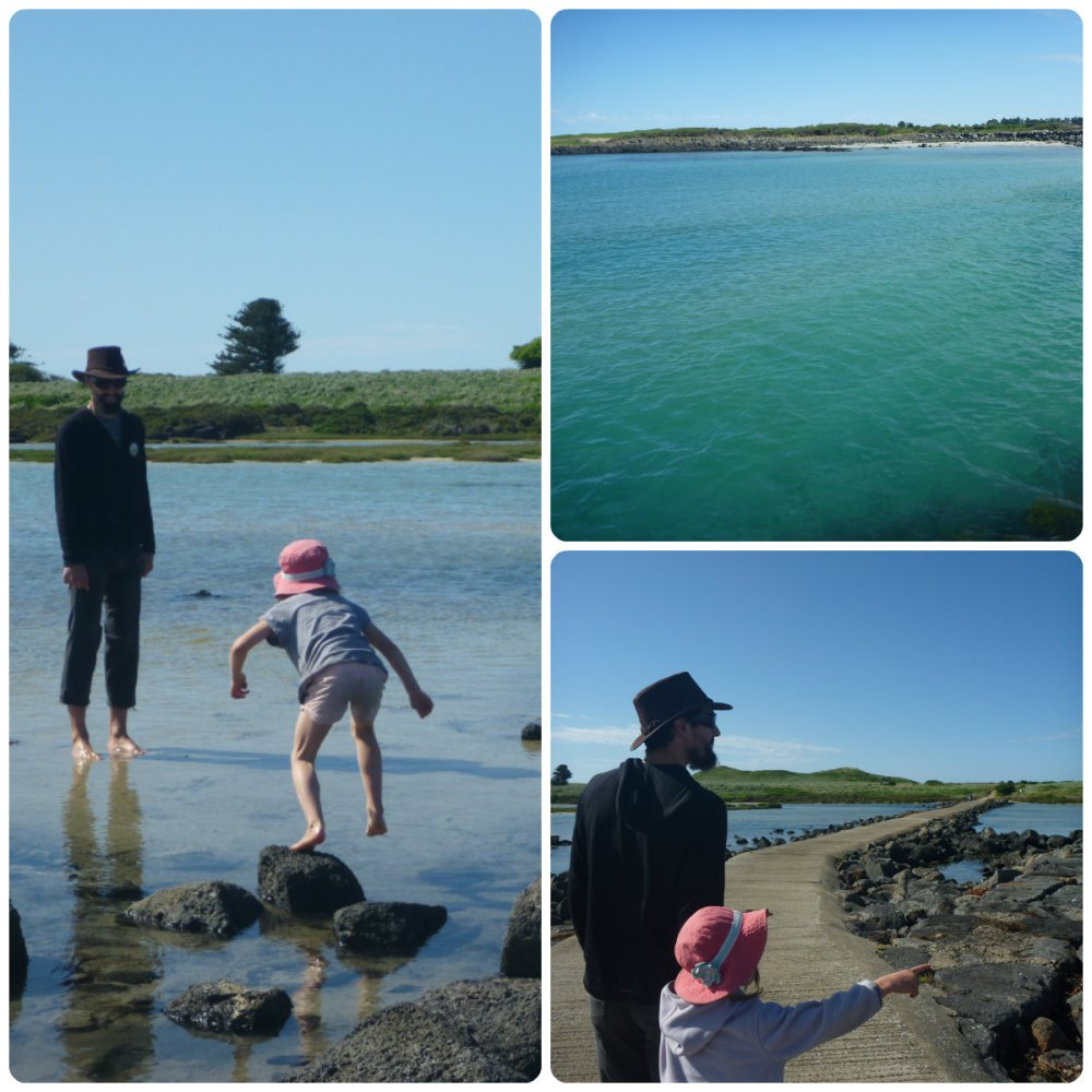 collage port fairy