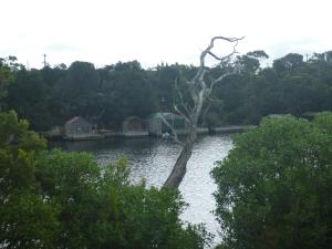 nelson glenelg river VIC