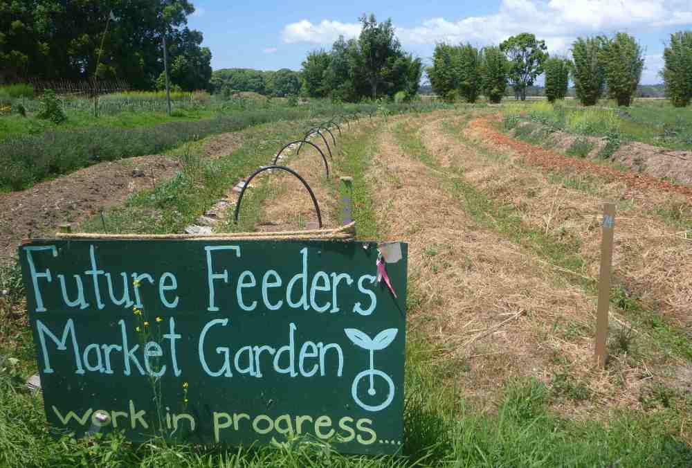 future feeders market garden