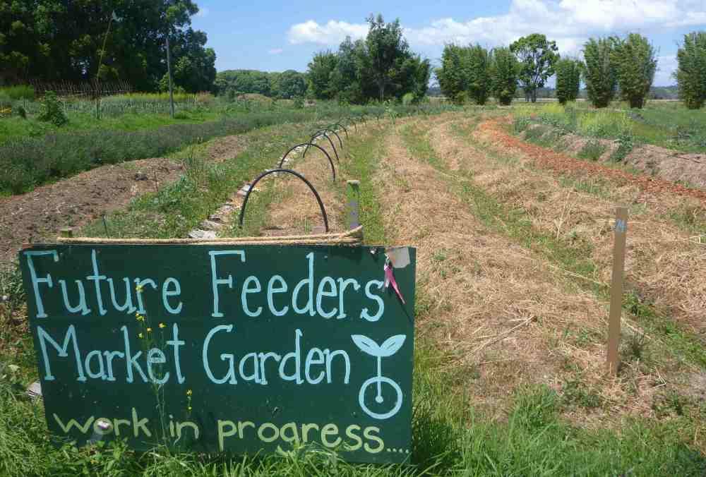 future feeders market garden
