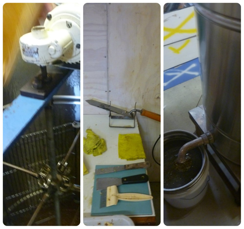 collage honey processing