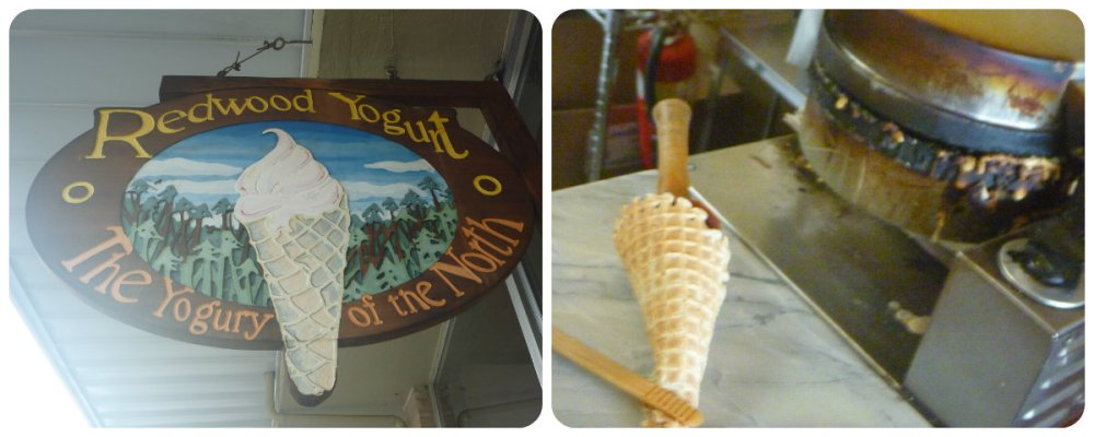 collage yoghurt at garberville