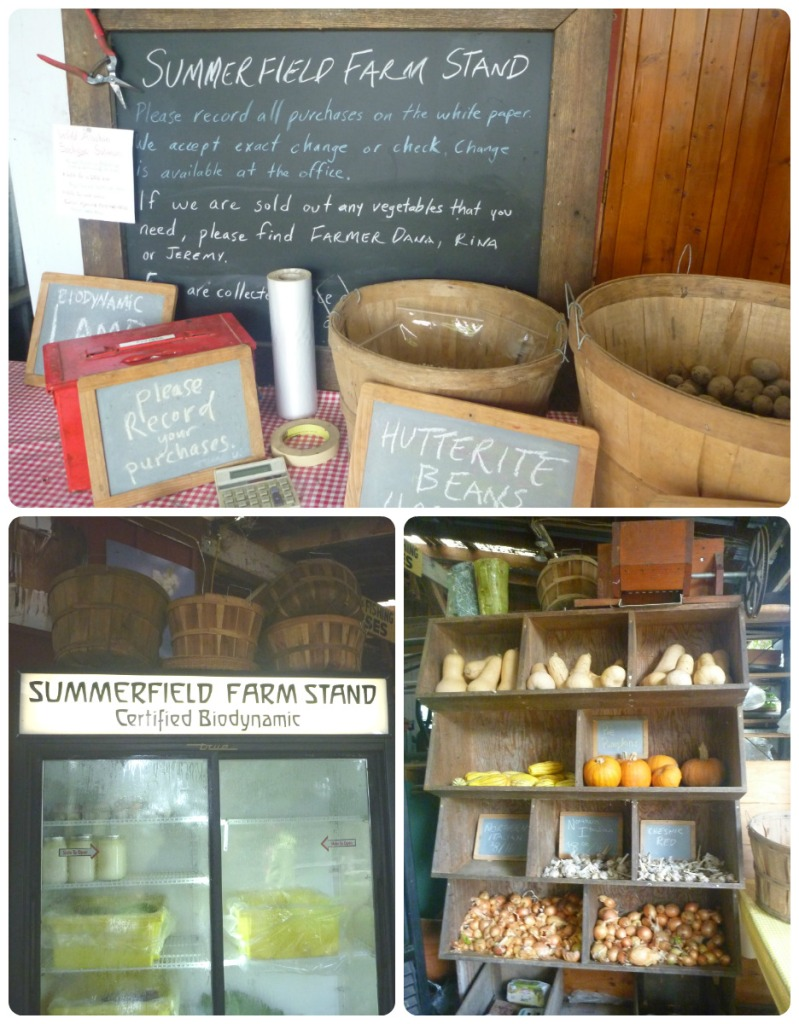 collage farm stand