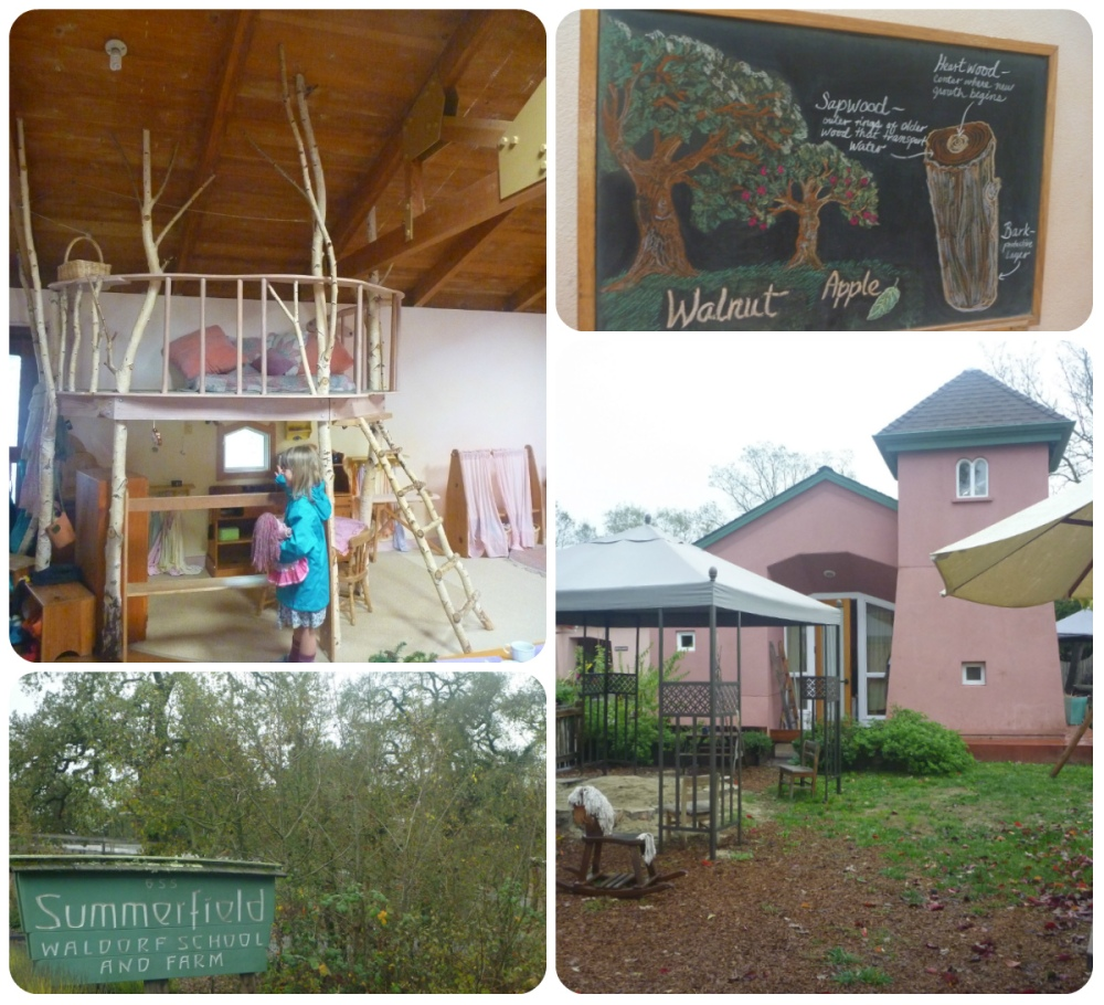 collage kindy rooms etc